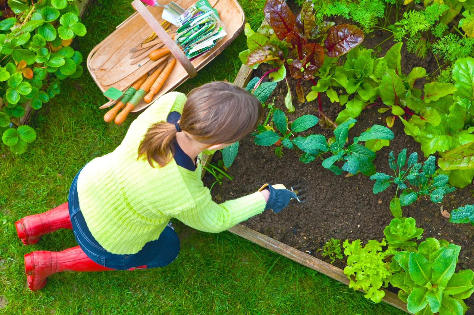 6 Wonderful health benefits of gardening