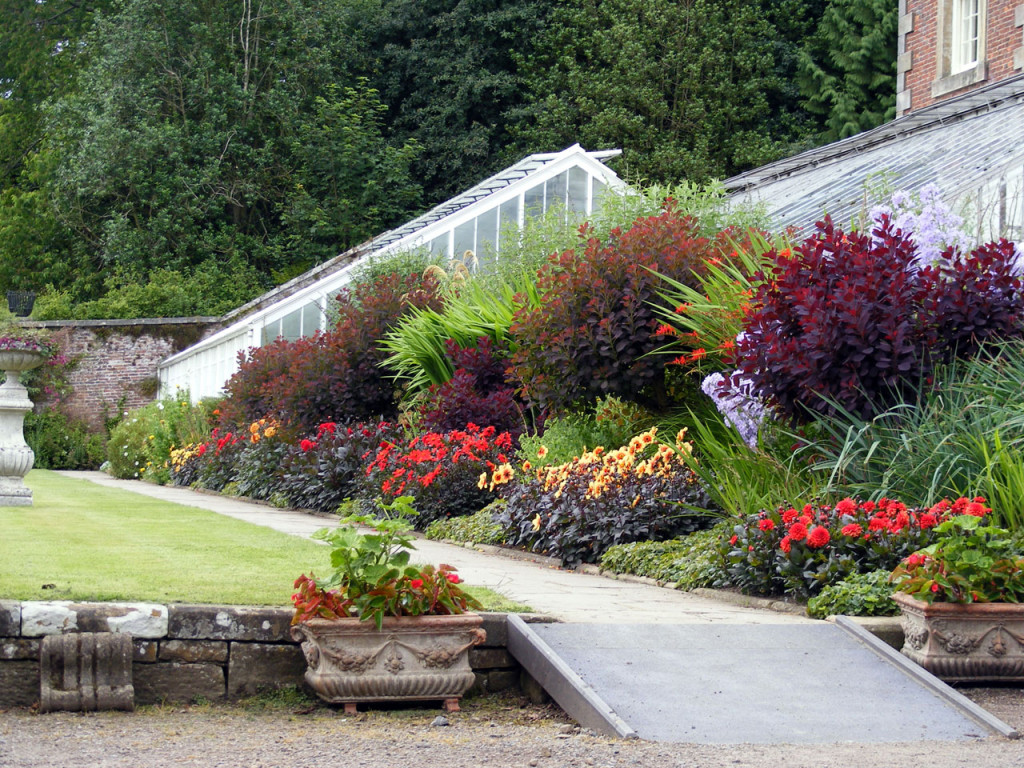 Plants that can create texture in your garden